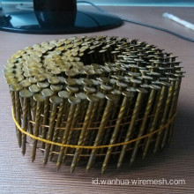 Anping Good Quality Coil Nail