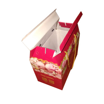 Hundred Fruits & Fruit Packaging Box