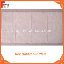 Placa de piel de conejo Rex blanco puro