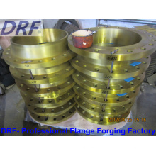 Forging Flange, Carbon Steel, Stainless Steel, Amse
