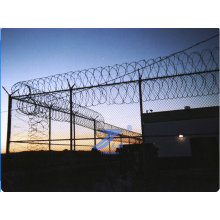 Erweitertes Metall Gefängnis Zaun (TS-EPF01)