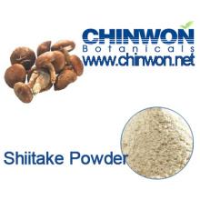 High Quality Pure and Natural Air Dry Shiitake Mushroom Powder