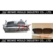 Car Plastic Grille Injection Mould