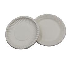Food Grade Biodegradable Disposable Tableware Products Sugarcane Bagasse Plates