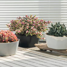 Best selling reusable plastic large flower pots irregular flower pots planters for plants nursery seedling pots