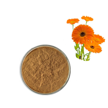 Calendula officinalis flower/Plant extract Lutein