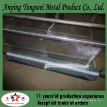 galvanized iron square mesh/ window screen wire mesh (really factory)