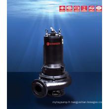 Wqz Series Wash Oneself Type de mélange Pompe d'égout submersible