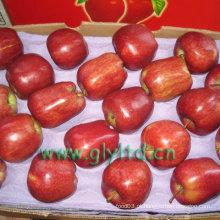 Red Delicious Apple com alto padrão