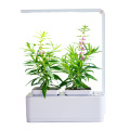 Smart Led Light Hydroponic Systems indoor Flower Pot
