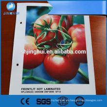 Impresión resistente de alta calidad de la bandera del vinilo de encargo de 20 onzas