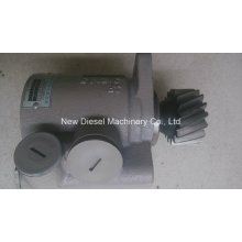 Weichai Diesel Engine Spare Parts Hydro Pump