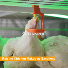 Sistema mais barato do bebedor do bocal das aves domésticas da exploração agrícola de galinha do preço mais barato