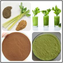 Celery extract Apigenin Powder 98% Anti-cancer HPLC 520-36-5