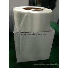 Supply 19mm Polyester Composite Strap Made in China