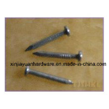 Joist Hanger Nails with Excellent Quality