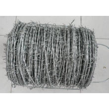 High Quality New Design Barbed Wire