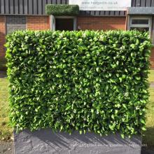 El eco amigable con mejores ventas decora las paredes verdes del jardín para el uso al aire libre