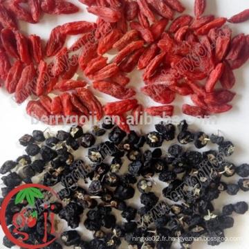 Wild Black Goji Berries en gros