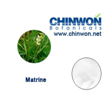 Reliable Factory Supply Matrine 98%
