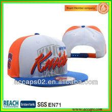 Custom brand snapback hats wholesale SN-2271
