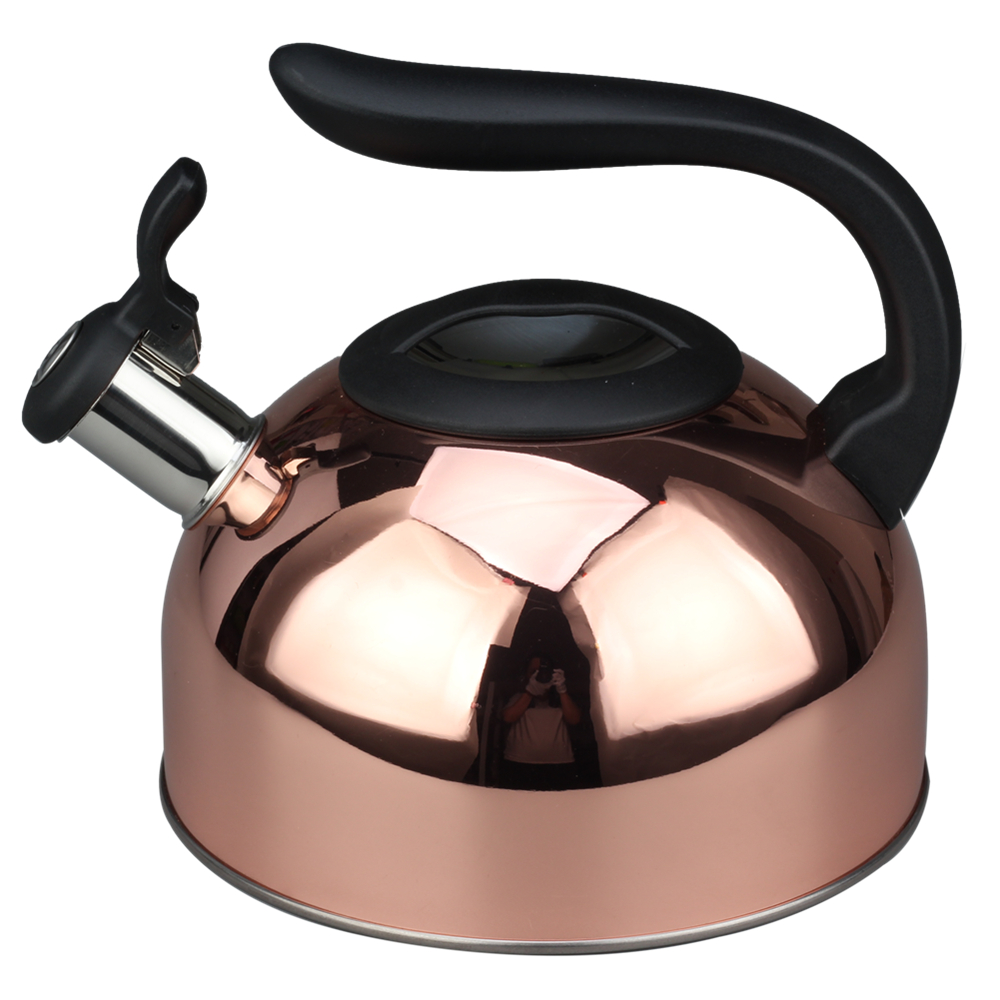 Plastic Handle And Lid Whistling Kettle