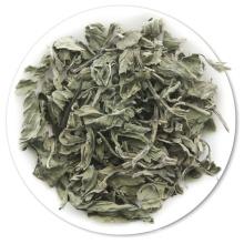 Natürliche Gesundheit getrocknete Pfefferminz-Minze-Kraut-Tee-trockene tadellose Blätter