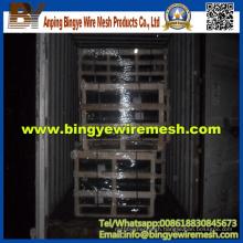 Chicken Wire Netting/Hexagonal Wire Mesh (factory manufacture)