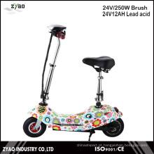 Mini Scooter Elétrico de Motor de 250W com Bateria 24V 2wheels