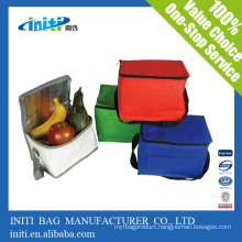 High quality custom non woven cooler bags/hiking cooler bag