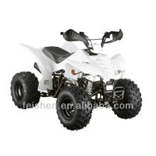 110cc мини Квадроцикл ATV ATV для детей (FA-E110)