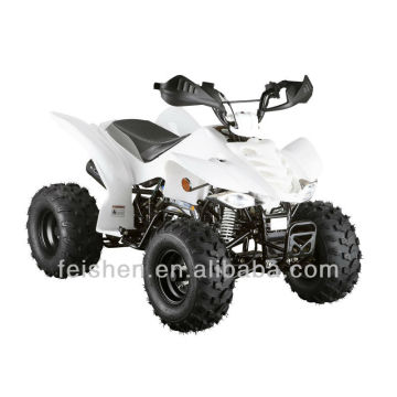 110cc Quad-Bike 110cc atv Quad-Bike prices(FA-E110)