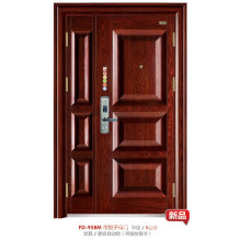 Steel Door (FD-958M)