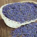 Té de flores secas de lavanda natural orgánica