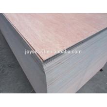 5 ply Okoume madera contrachapada núcleo de álamo