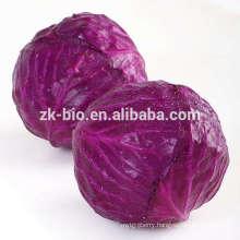 Organic Red Cabbage Powder