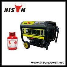 BISON (CHINA) Made In China Preço do Gás Natural Comprimido Gerador CNG