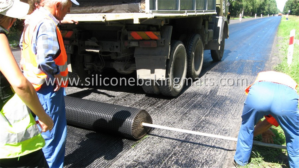 Asphalt Pavement Mesh