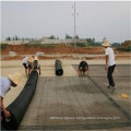 30-30 warp knitted polyester geogrid manufacturer price for strengthening soft ground of rail and road