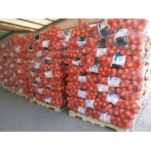 Mesh Bag Packing Fresh Organic Red Onion
