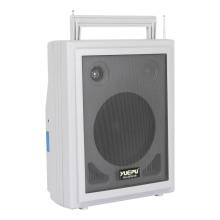 Amplificador portátil con dos micrófonos y un cassette