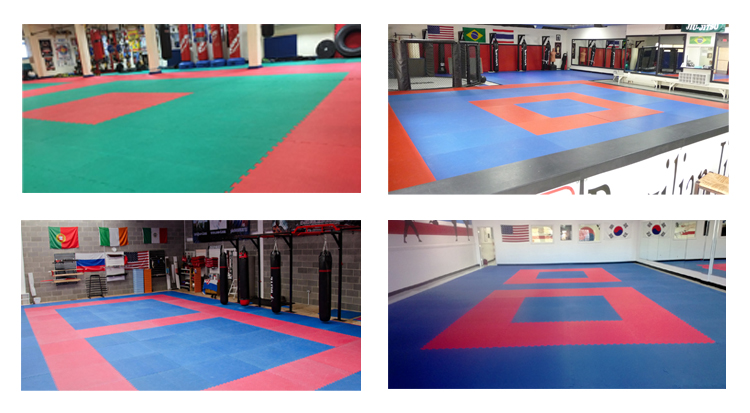 Eva Taekwondo Mat product application