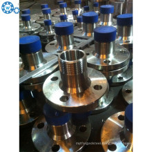Stainless Steel Weld Neck Flange Forged Flange