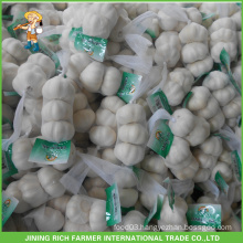 Normal White Natural Garlic 5.0cm 5.5cm 6.0cm 6.5cm Natural Fresh Garlic