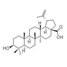 Betulinic Säure 472-15-1