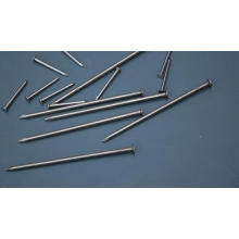 Hot Sale Manufacturer Common Wire Iron Nail