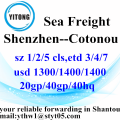 Shenzhen International Ocean Freight a Cotonou