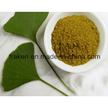 High Quality Cp/USP Ginkgo Biloba Extract