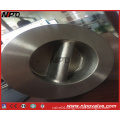 Wafer Type Dual Plate Swing Check Valve (H76)