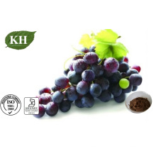 Grape Skin Extract 5% Resveratrol, 25% Polyphenols; 4: 1 to 20: 1
